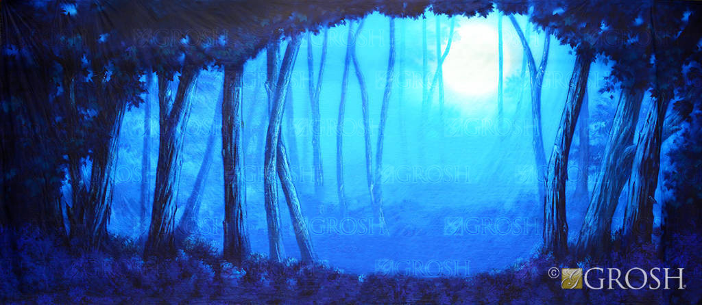 Beautiful dark blue moon forest used in productions of Addams Family and Beauty and the Beast.