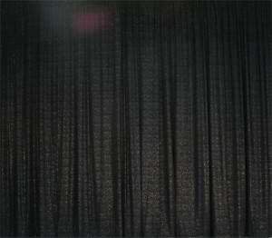 Black Velvet Sparkle Dot Backdrop