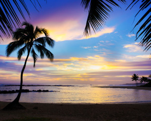 Blue Hawaiian Sunset Pop-Up Drop Backdrop
