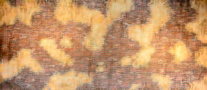 Brick and Stucco Wall Backdrop