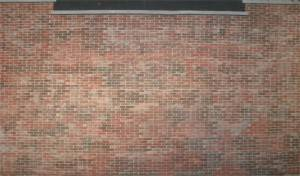 Brick Wall Backdrop