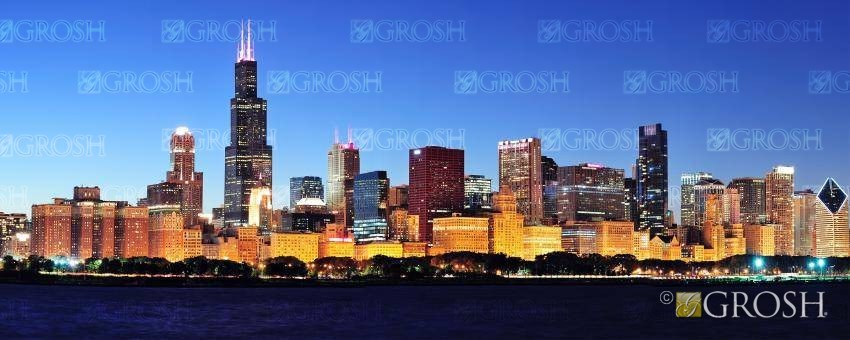 Chicago Skyline 1 Backdrop