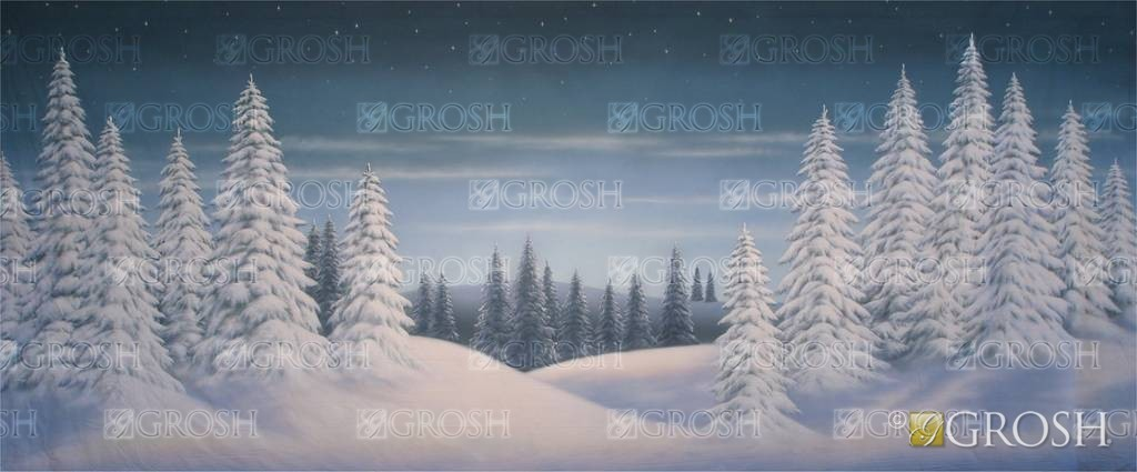 Night Snow Landscape 5 Backdrop