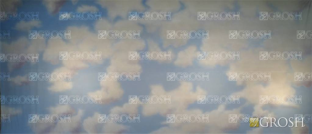 Day Sky 2 Backdrop