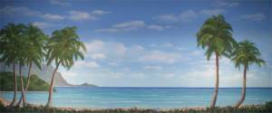 Tropical Beach Cove used in Production so South Pacific