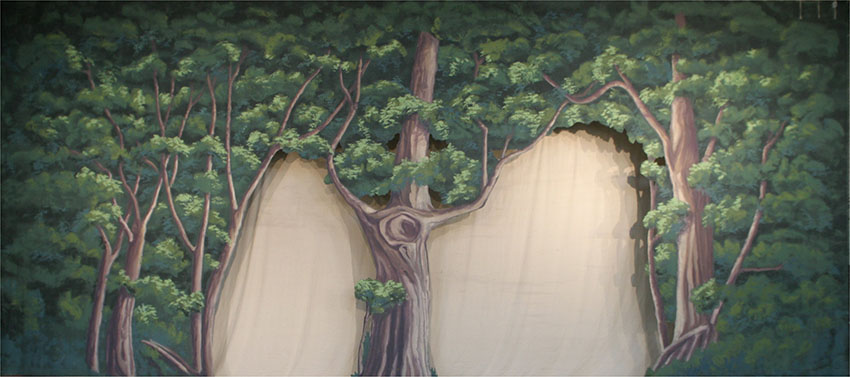 Forest with Cut Opening Backdrop