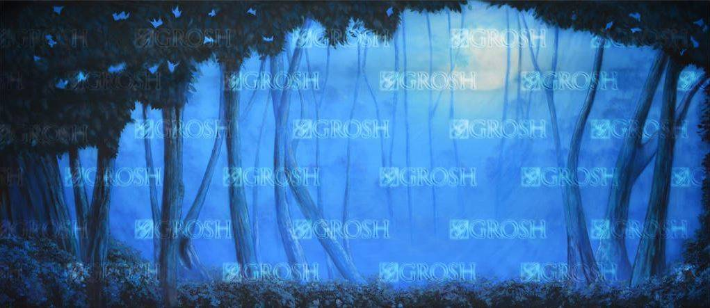 Into the Woods Blue Night Forest Backdrop