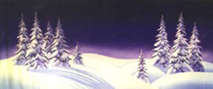 Night Landscape with Snow Backdrop