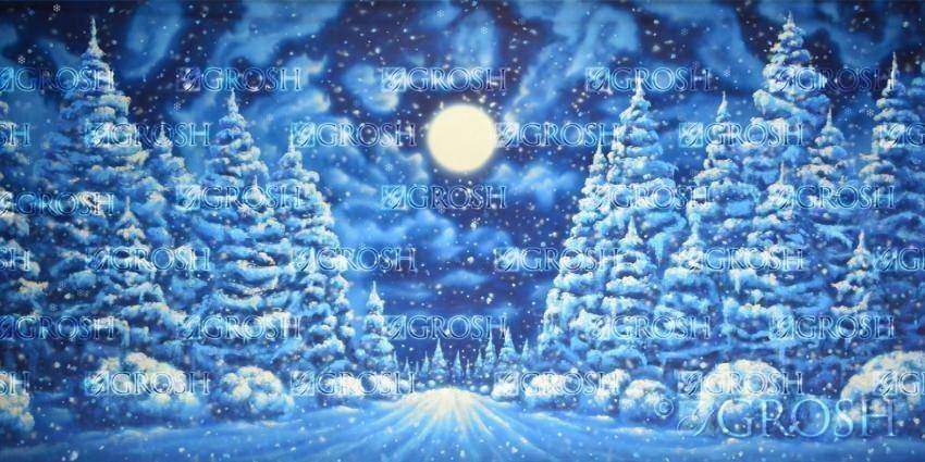 Frozen backdrop with snow covered trees and bushes
