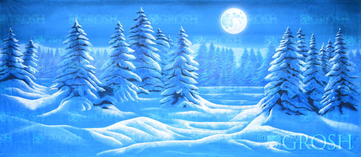 Snow Landscape with full moon backdrop used in productions of nutcracker, Frozen and Christmas Carol