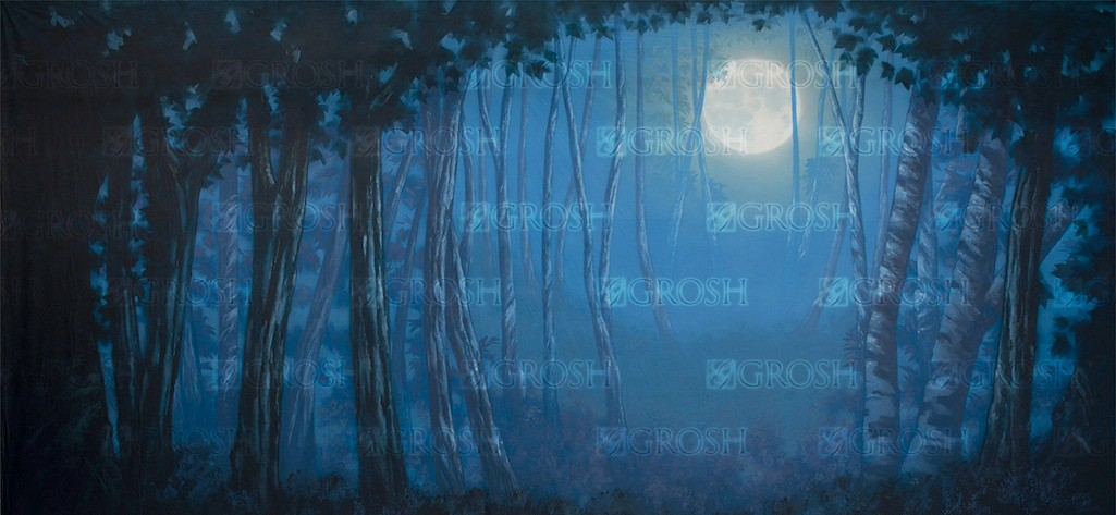 Blue Night Forest backdrop for Addams Family, Big Fish, Alice in Wonderland, Halloween plays and productions