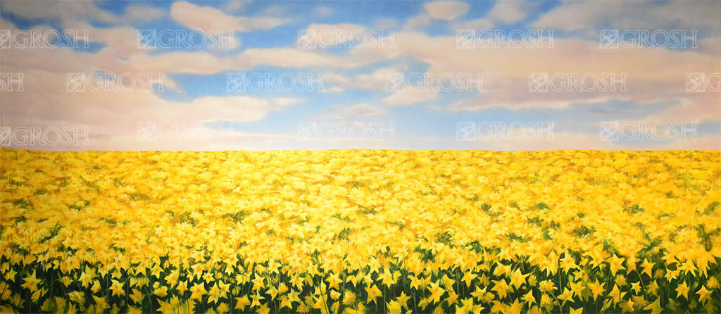 Daffodil Field backdrop for Alice in Wonderland, Annie Get Your Gun, Big Fish, The Wiz and Wizard of Oz plays and productions