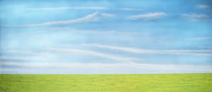 Green Field backdrop for Honk!, Charlotte's Web, Wind in the Willows, Country, Wizard of Oz plays and productions