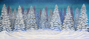 Night Snow Landscape backdrop used in productions of Nutcracker