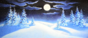 Night Snow Landscape Backdrop