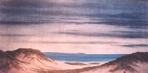 Sand Dune and Beach Backdrop
