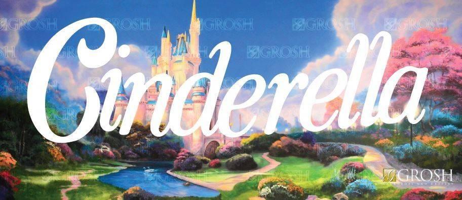 Cinderella Backdrop Image